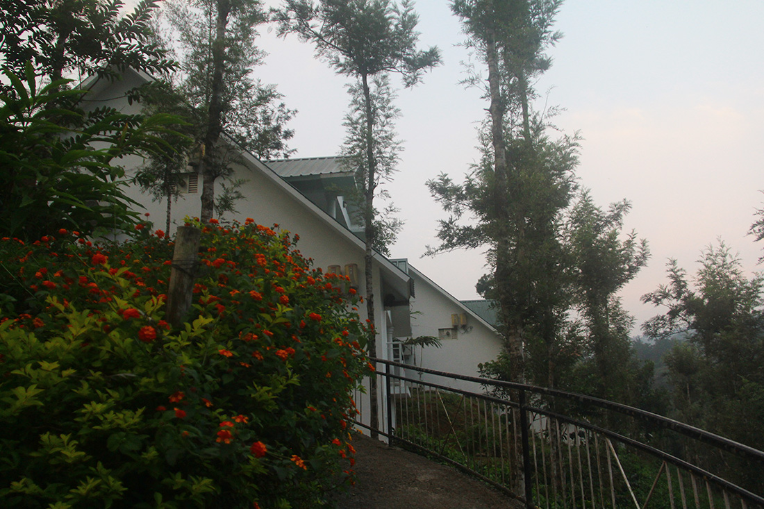 Hotels and resorts in munnar
